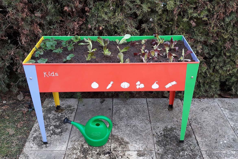 Mini hort per a infants
